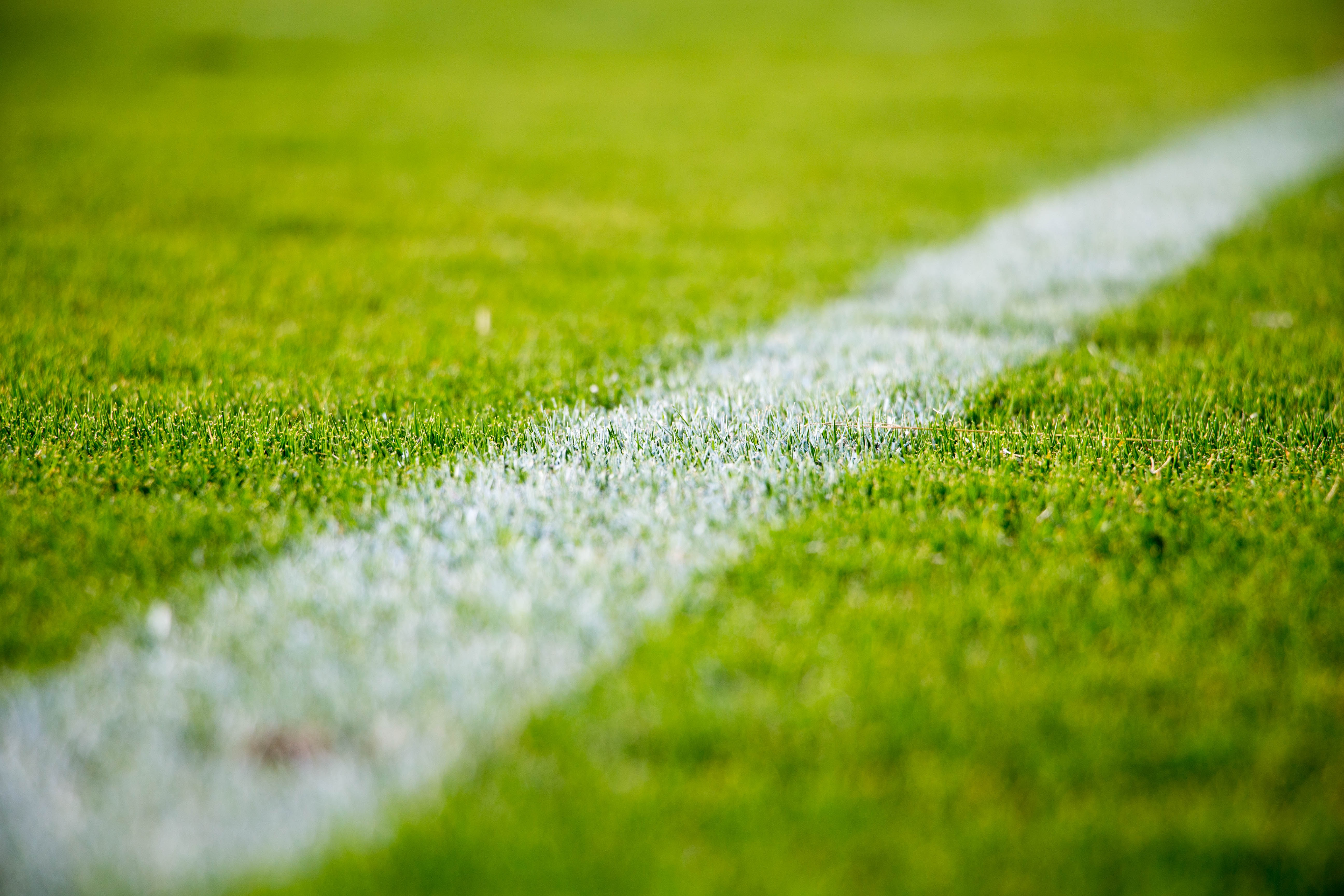 close-up of a white line on a football pitch