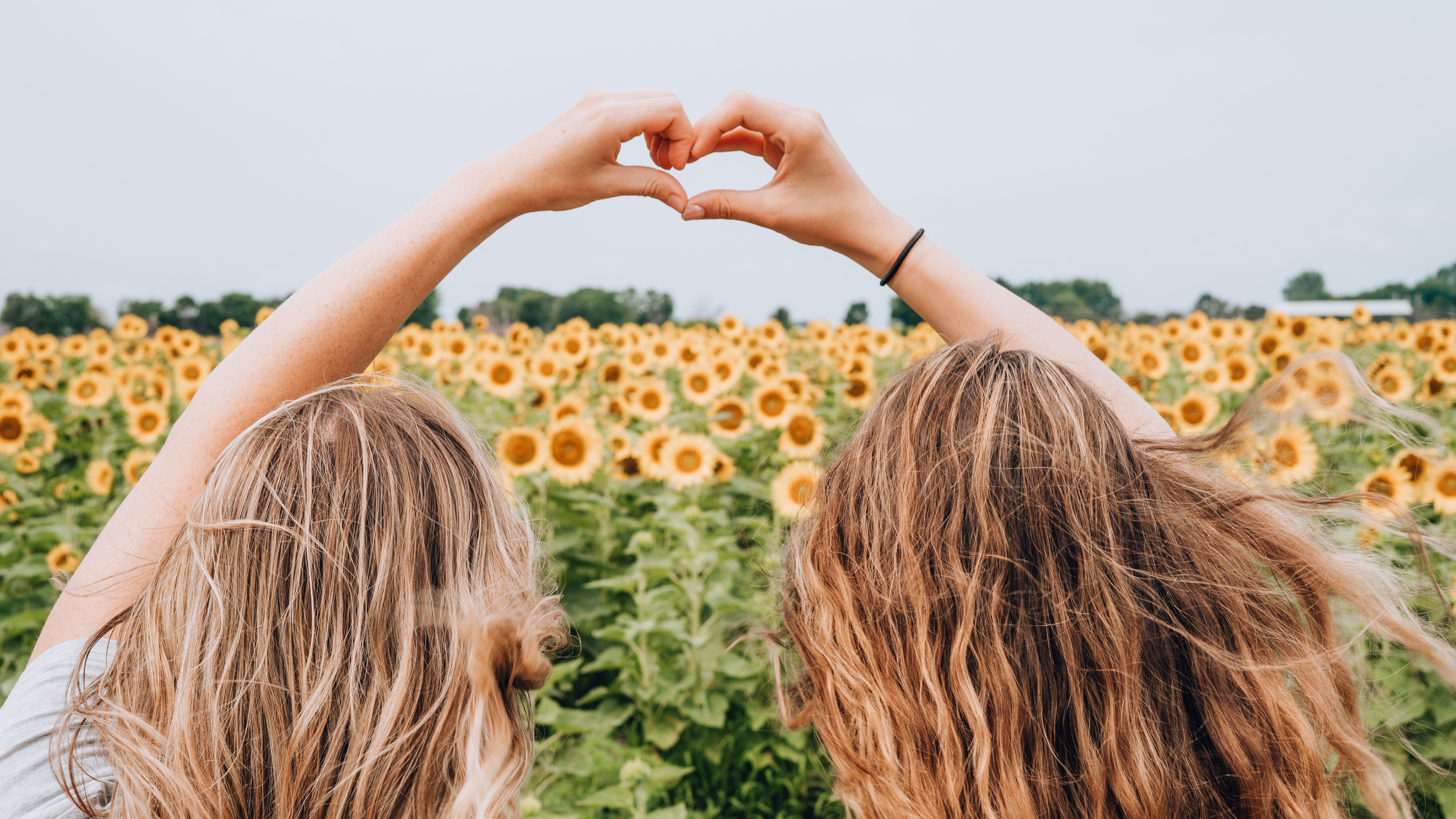 two young people in front of field of sunflowers