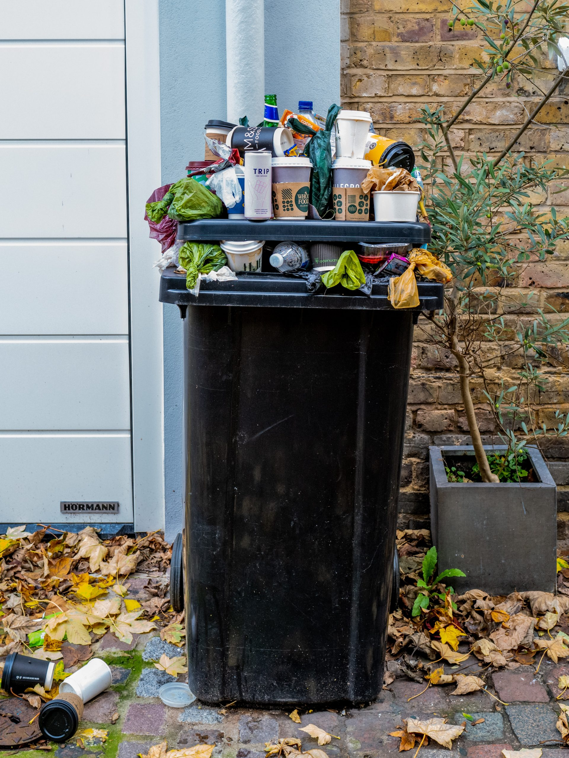 picture of bin